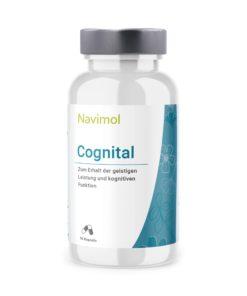 Cognital