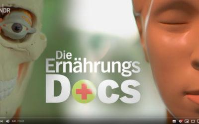 NDR Beitrag über MS und Darmflora