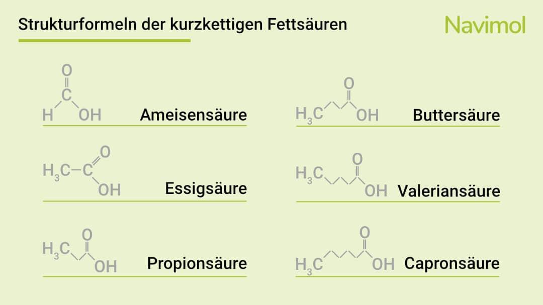 Strukturformeln der kurzkettigen Fettsäuren