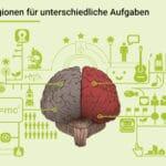 Das Gehirn nutzt verschiedene Regionen für unterschiedliche Aufgaben
