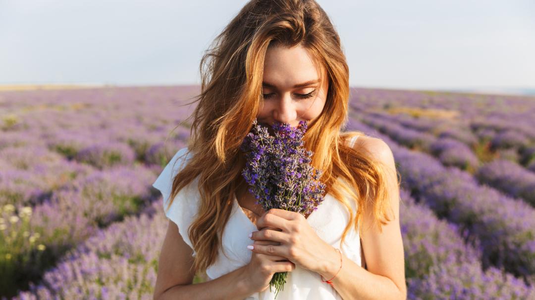 Wonach riechen wohl die Blumen für einen Synästheten?