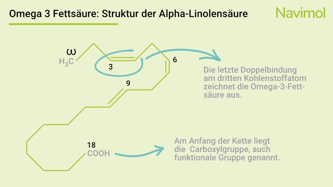 Die chemische Struktur von ALA zeigt die Doppelbindung an der dritten Stelle.