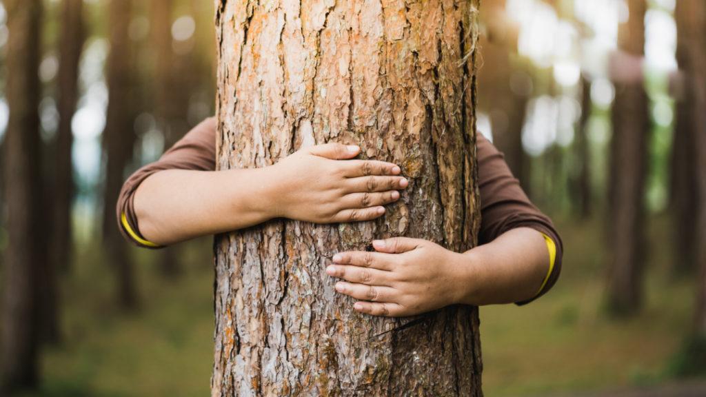 Wir lieben die Natur genau so wie Sie